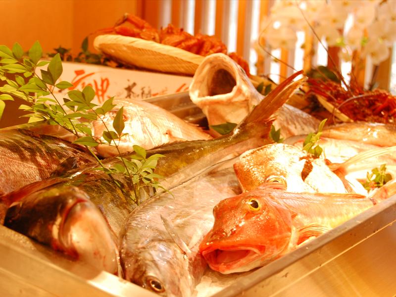 鹿児島 田中水産 美味しい魚が食べられるお店